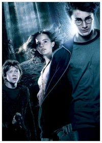 Портретный постер Harry Potter #10677